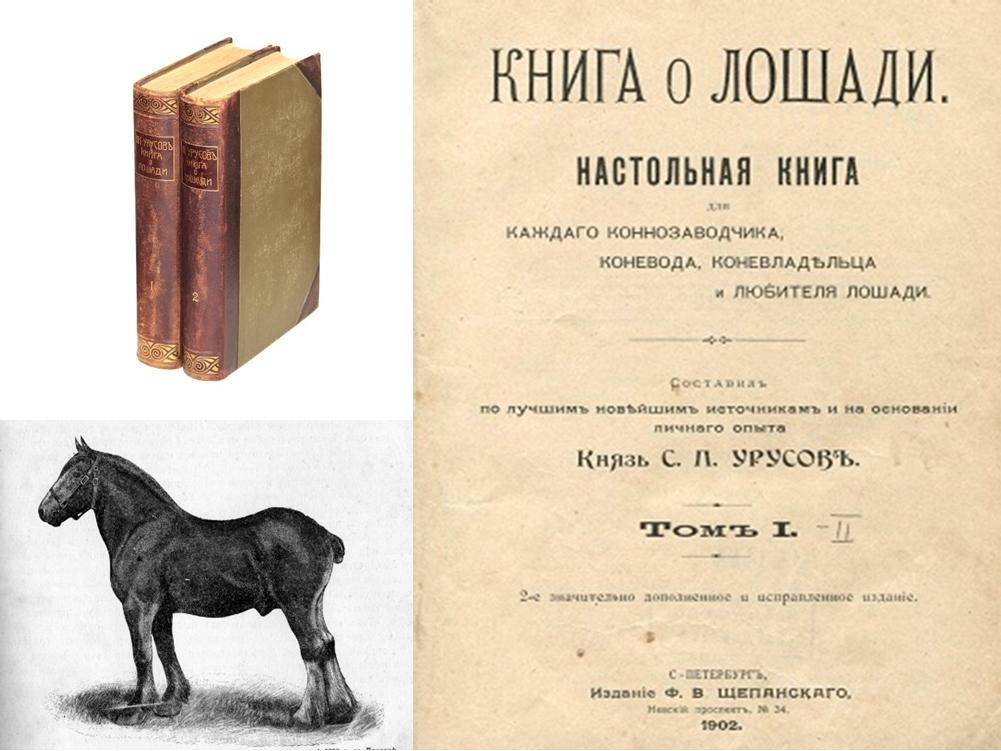 Книга о лошади урусов скачать