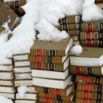 snowylaw-thumb-400x598-25006
